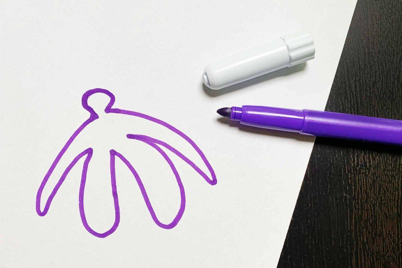 disegno-del-clitoride